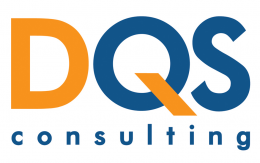 Logo D-QS Consulting